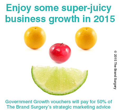 Government Growth Voucher Provider