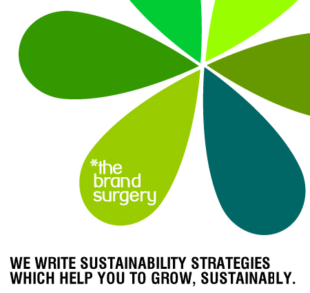 Sustainability strategy creation