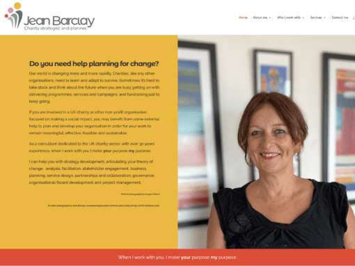 Marketing coach and mentor service: Jean Barclay Charity Strategist