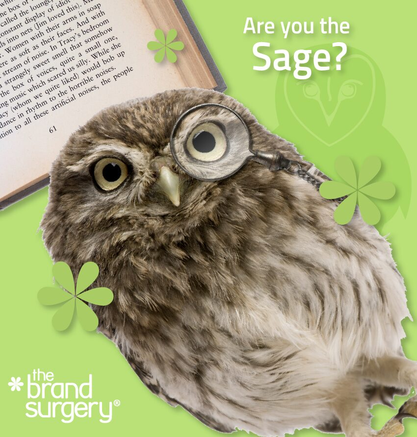 Are you the Sage? The Sage wants to find the truth by using insights, knowledge and analysis to understand the world