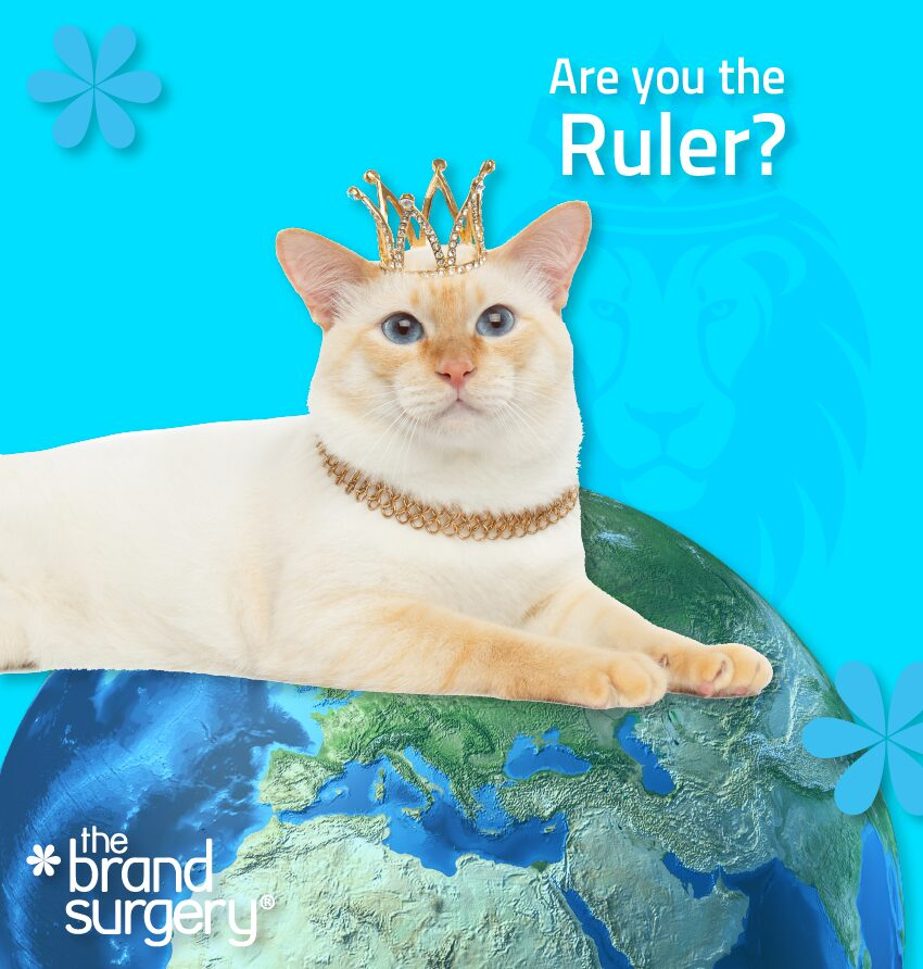 Brand Archetype: The Ruler - Rulers want to be powerful leaders and controllers after world domination Rulers are traditional leaders with less soft skills